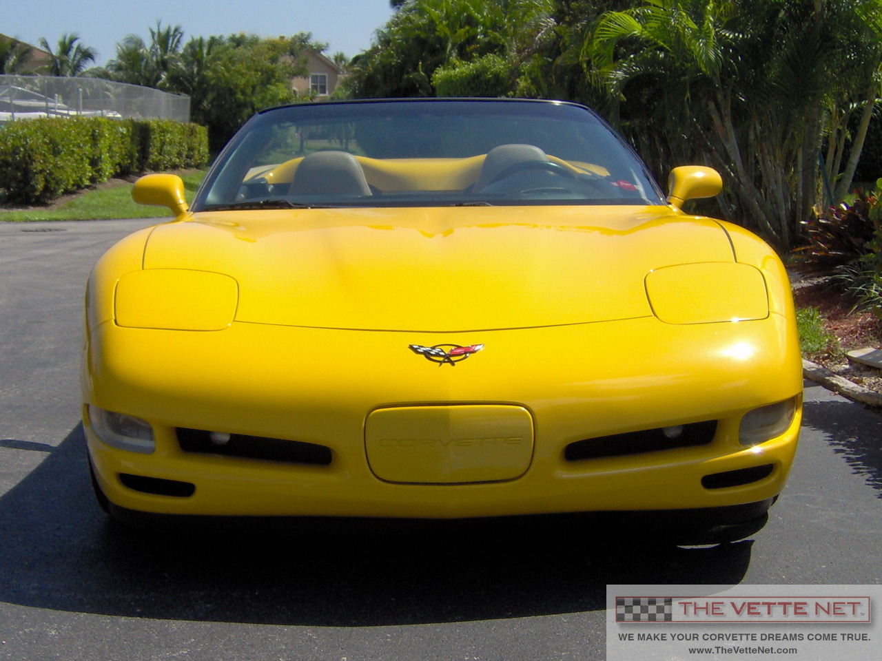 2004 millennium yellow convertible corvette corvette news. Black Bedroom Furniture Sets. Home Design Ideas